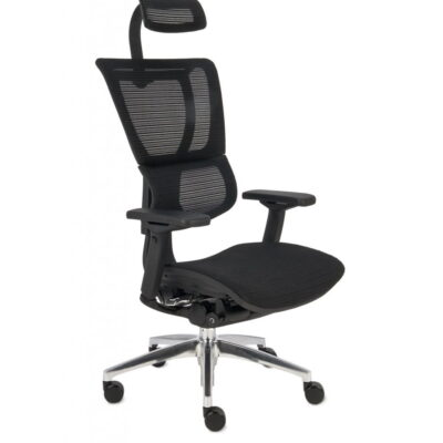 Ergonomski stol IOO Mesh